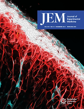 m_jem_215_12_cover.png