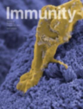cover.tif-4.jpg