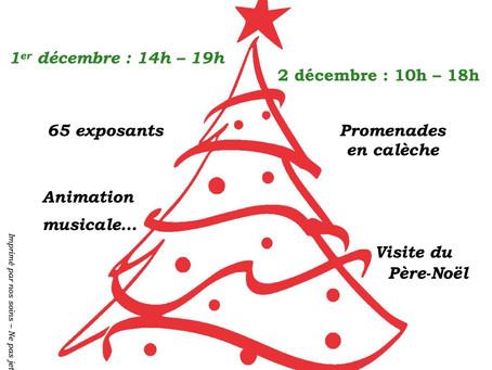Marché de Noël au château de la Roche Courbon