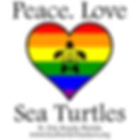 Sea turtle trackers.png