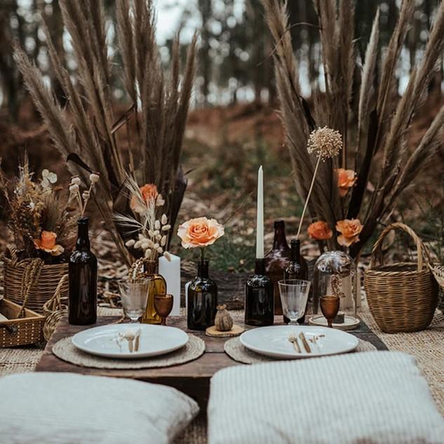 picnic para 2