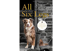 6 legs store.jpg