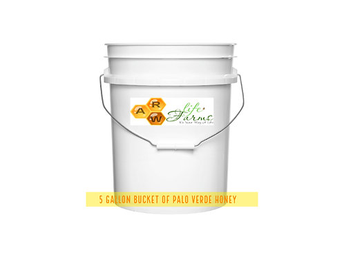 5 Gallon Palo Verde Honey