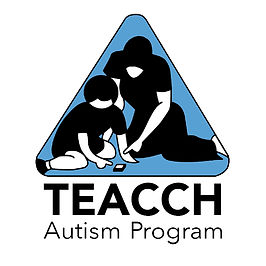 teacch-autism-program-26039.jpg