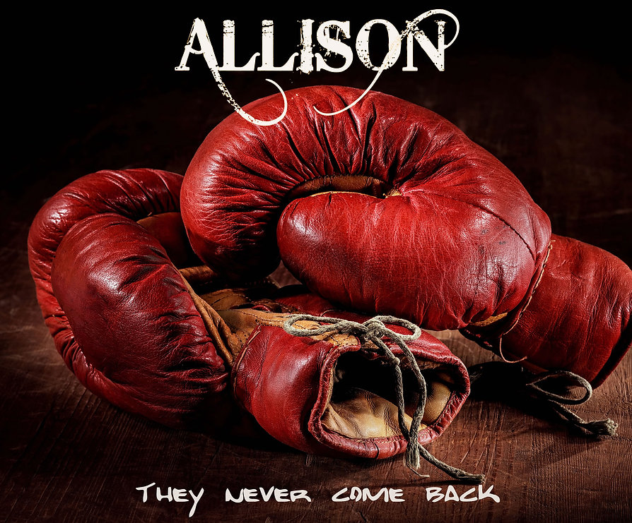 allison_cover_tncb_2000x2000_72dpi_klein