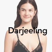 DAR-2.png