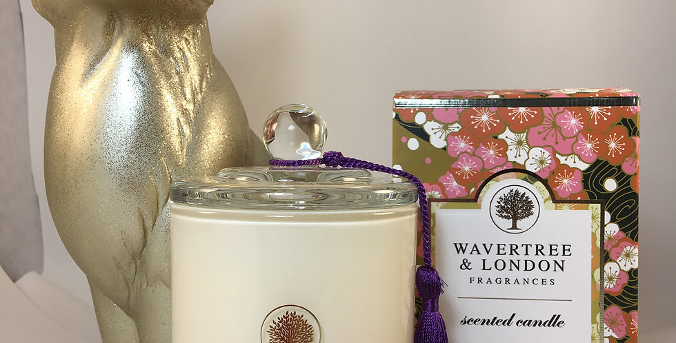 Japanese Plum Scented Candles