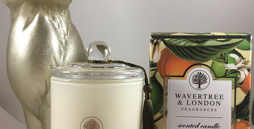 Basil, Lime and Mandarin Candle