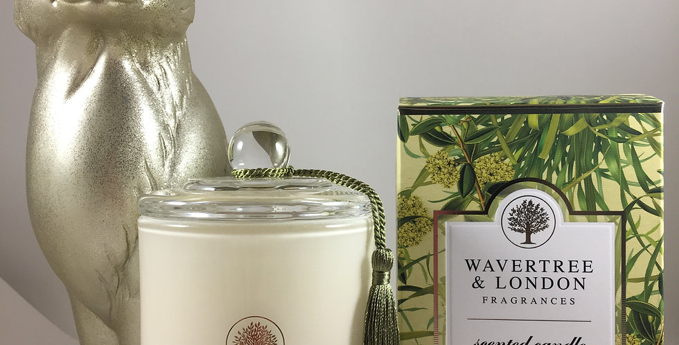 Lemon Grass & Lemon Myrtle Candle