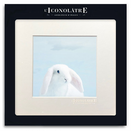 0119 LAPIN - Collection : L'ICONOLÂTRE