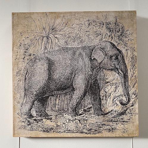 Elephant - Panneau
