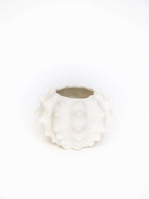 Vase HAV