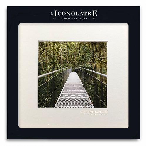 0304 LE PONT - Collection : L'ICONOLÂTRE