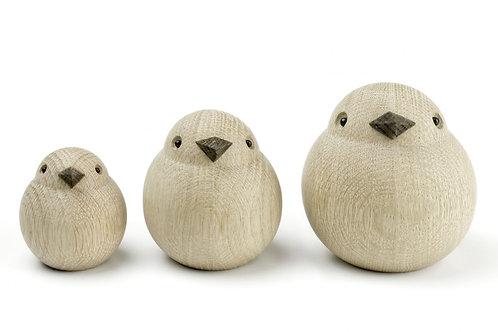 Oiseau Chêne The Sparrows