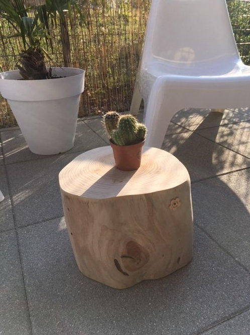 Table d'appoint- Cactus