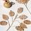 Thumbnail: Planta Delicado 8 stem