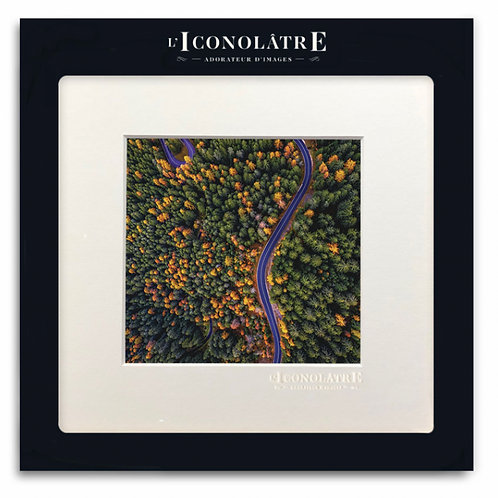 0322 - Collection : L'ICONOLÂTRE