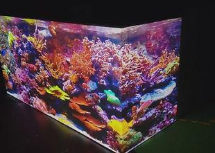 a projection mapped aquarium.