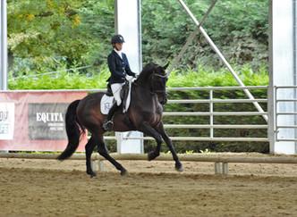 Lucero HN & Caroline Ulrici Champion d'Europe Jeunes chevaux au MCI