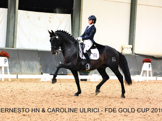 Hernesto HN 9ème de la FDE Gold Cup.
