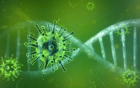 Was können wir gegen Viren tun?