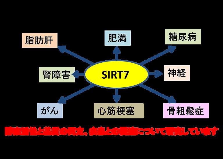 図2-2.png