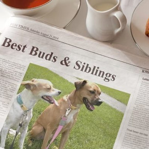 Best Buds & Siblings on Morning News!