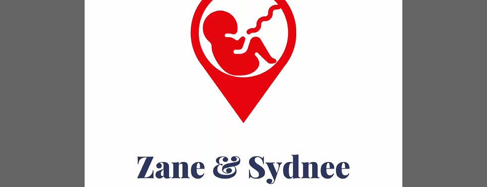 Zane and Sydnee Story