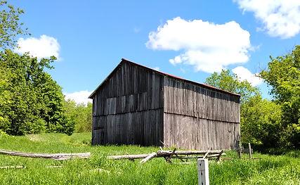 Barn_2020 06 07_1152361-2.jpg