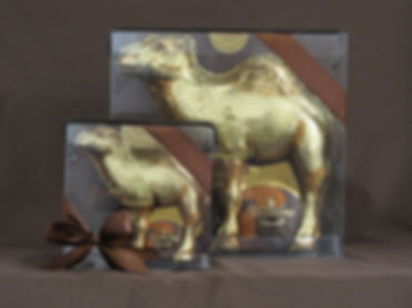 Large and Small Camels.JPG
