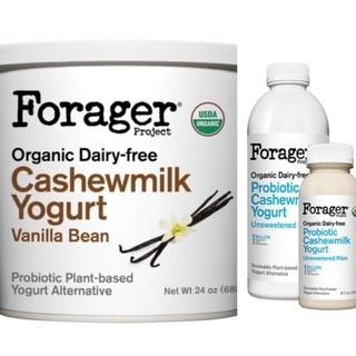 Non-Dairy Probiotic Source