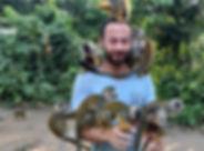 micos-o-monos-ardilla-amazonas-colombia.