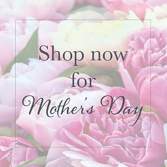 Mothers Day Web Banner2.jpg