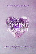 Divine Accident front.jpg