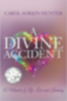 A Divine Accident.jpg