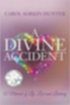 A Divine Accident.jpg
