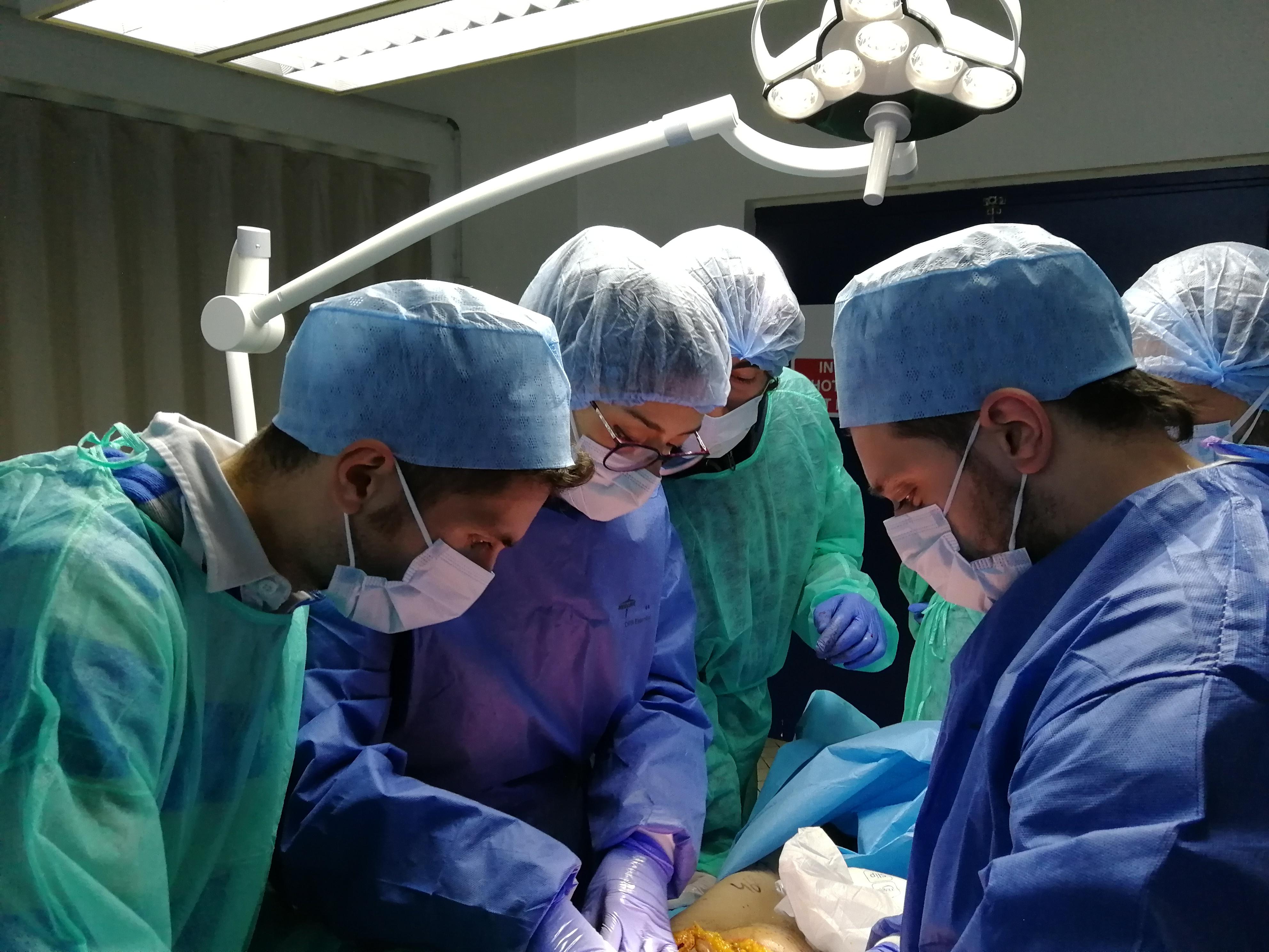 dissezione anatomica