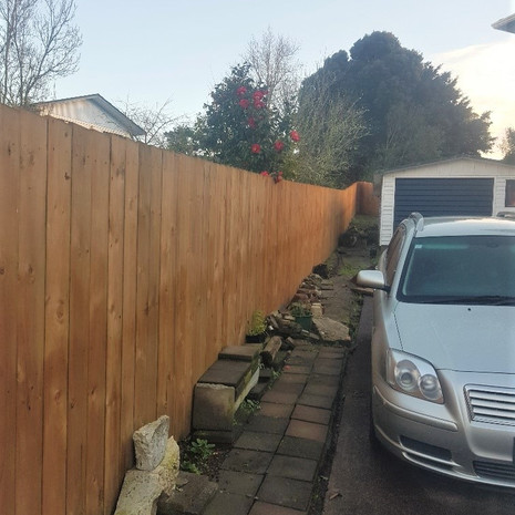 Glenfield new fencing