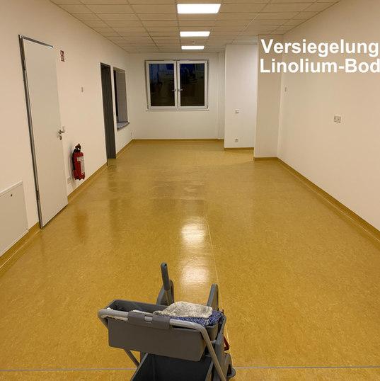 Fußbodenversiegelung Hanse Maid