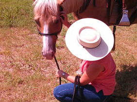 TEACH YOUR HORSE TO ACCEPT DEWORMING