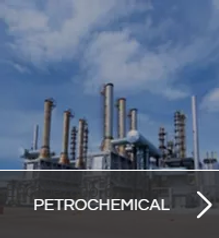 petroquimica-INGLES.png