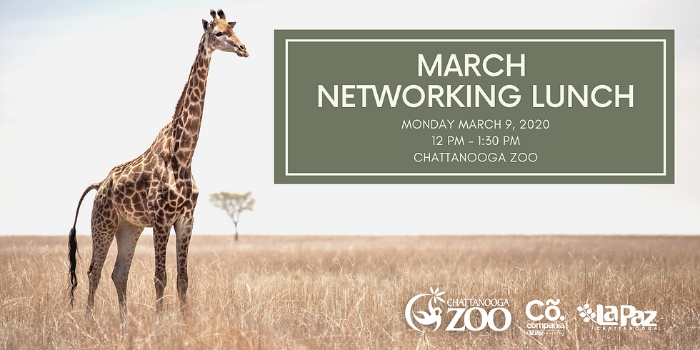 March Networking Lunch