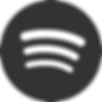 iconfinder_social_media_logo_spotify_128