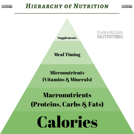 Nutrition Hierarchy Explained