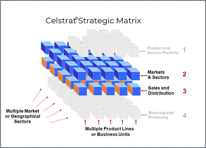 Celstrat Matrix 2a.jpg