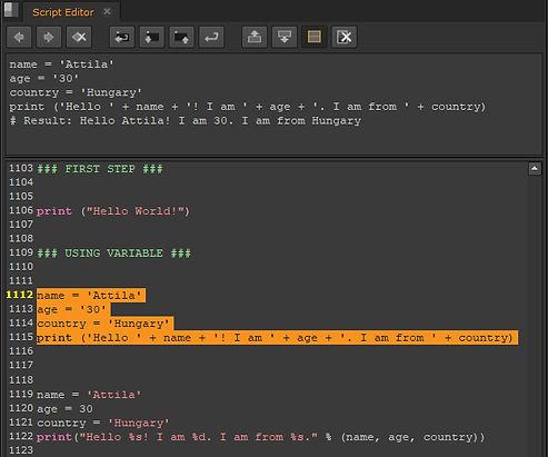 python_02.jpg