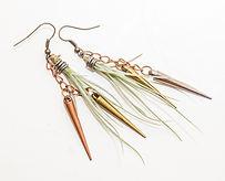Air plant earrings living jewlery