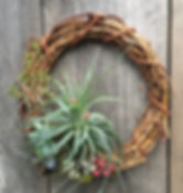 Air plant wreath holiday wreath christmas wreath hanging wreath