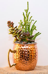 Moscow mule pot