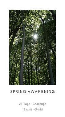 Spring Awakening 1.jpg